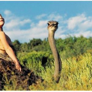 動物と育った子ども 発育環境とは 〜ナミビア・フランス〜