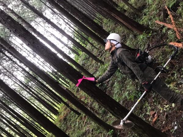 木こり体験キャンプまで、あと少し〜山の下準備編〜